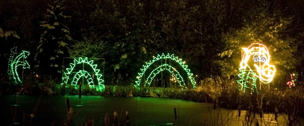 contact us country springs christmas country christmas - Country Springs Christmas Lights