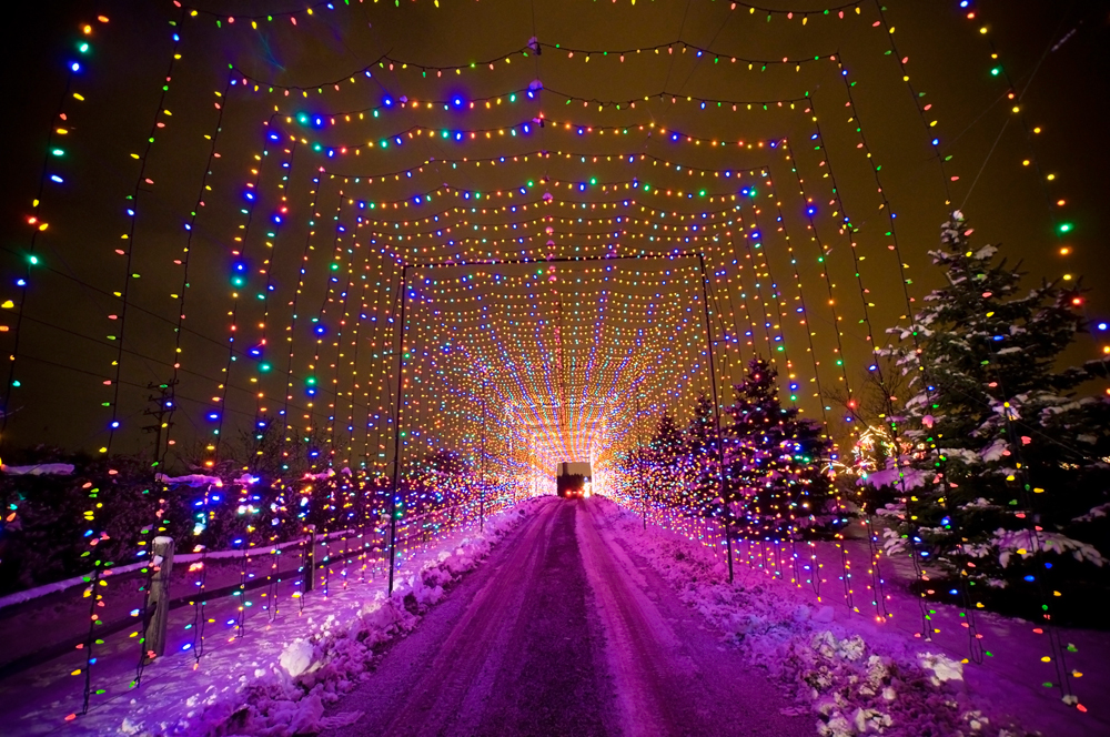 Country Christmas Trail - Christmas Lights Displays Photo Gallery Country Christmas